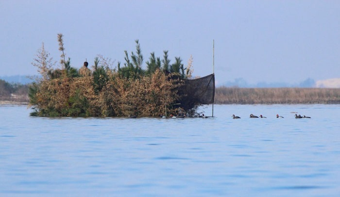 diy-duck-boat-blind